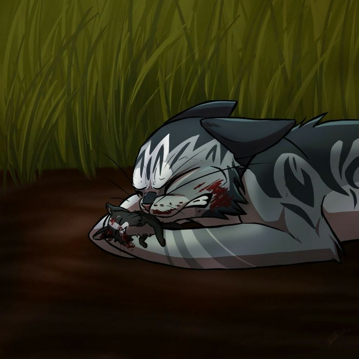 Warrior Cats Dead: The Tinyiest Warrior....(I Forget The Artist But Credit To