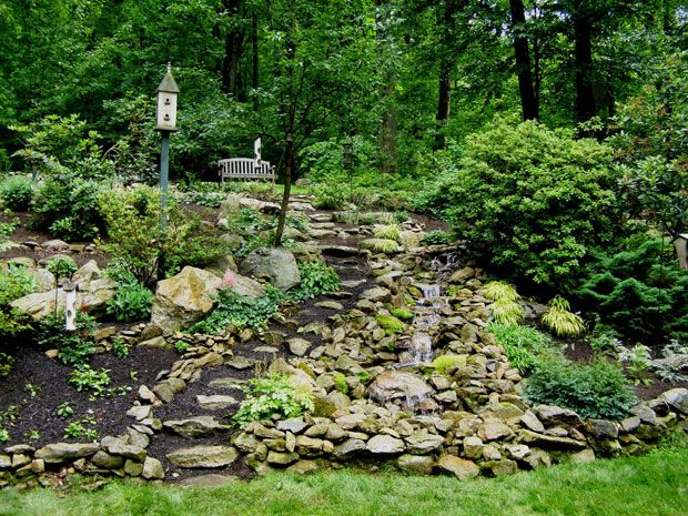 Landscaping Ideas For Shady Hillside : Best images about wooded back yard ideas on