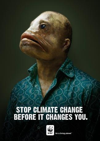 Stop Climate Change  人間が魚類になってしまう前に。  (地球温暖化→今、陸のところが水びたしになる→人間が魚類になる。)