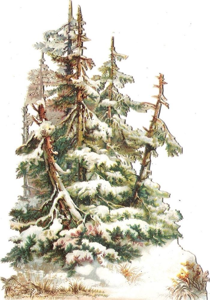 Oblaten Glanzbild scrap die cut chromo Wald Baum 14,5cm tree Winter Schnee snow: