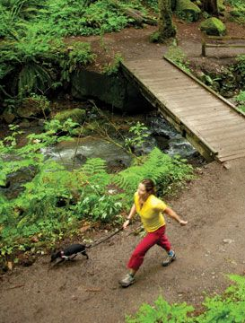 """An article on """"Nature-Deficit Disorder""""... get out and go hiking people! Its good for you!"""