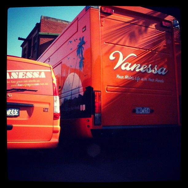 The Vanessa family is expanding fast!
