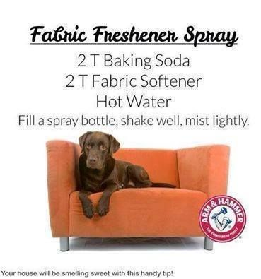 """Do you need a fabric spray to make your cushions and rugs smell nice? As my little dog likes to get on the couch and snuggle in the cushions I am always spraying them. Here is a home made spray to try.  ✔ Like ✔ """"Share"""" ✔ Tag ✔ Comment ✔ Follow me  Friend or follow me at~~> www.facebook.com/fredadax  Order Skinny Fiber here --->www.fsfthin.sbc90.com/ Take a free tour here~~> www.fsfthin.sbcfreetour.com"""