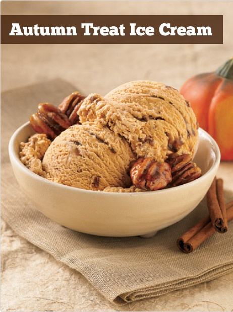 Pumpkin icecream with swirls of cinnamon and candied pecans...