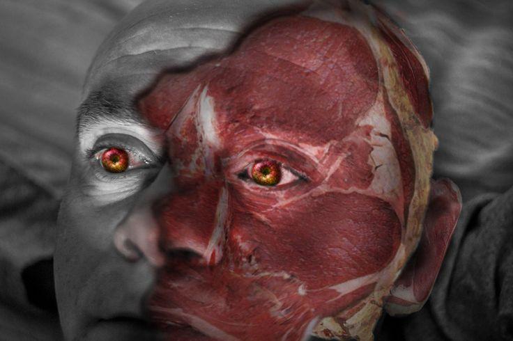 Photograph Anatomy by Mirella Molinari on 500px