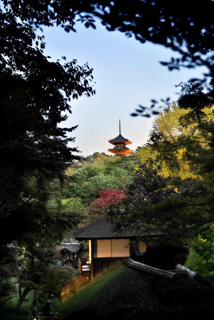 みなとみらい 横浜 三溪園 サンセット 夕焼け sunset