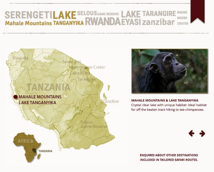 One of the many amazing national parks of Tanzania.