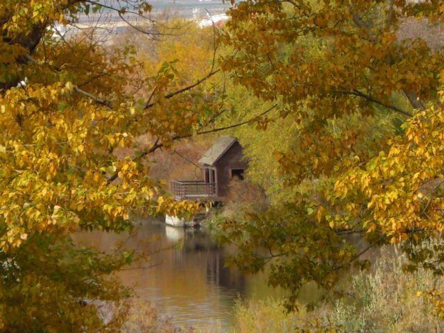 Umatilla, Oregon - Wikipedia