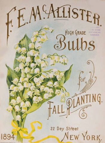 High grade vegetable and flower seeds, bulbs and small fruits for spring planting / F.E. McAllister :: Nursery and Seed Catalogs