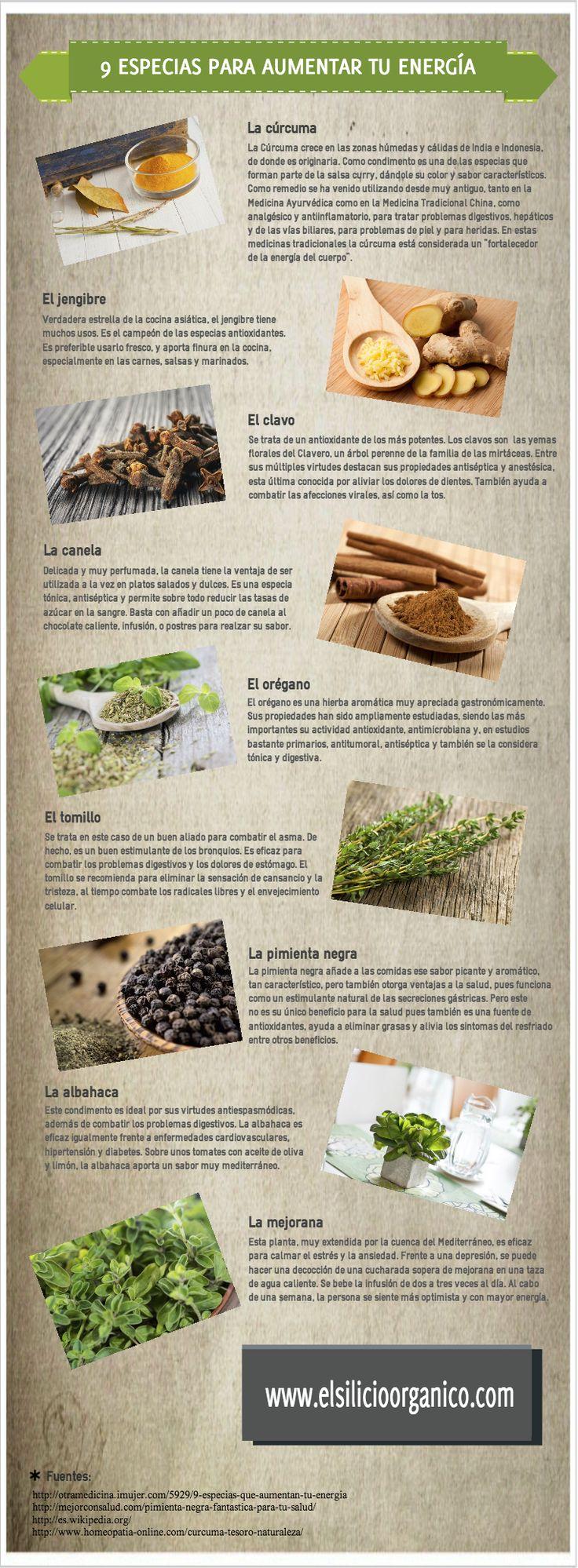9 especias para tener mas energía. #Infografia #salud #health