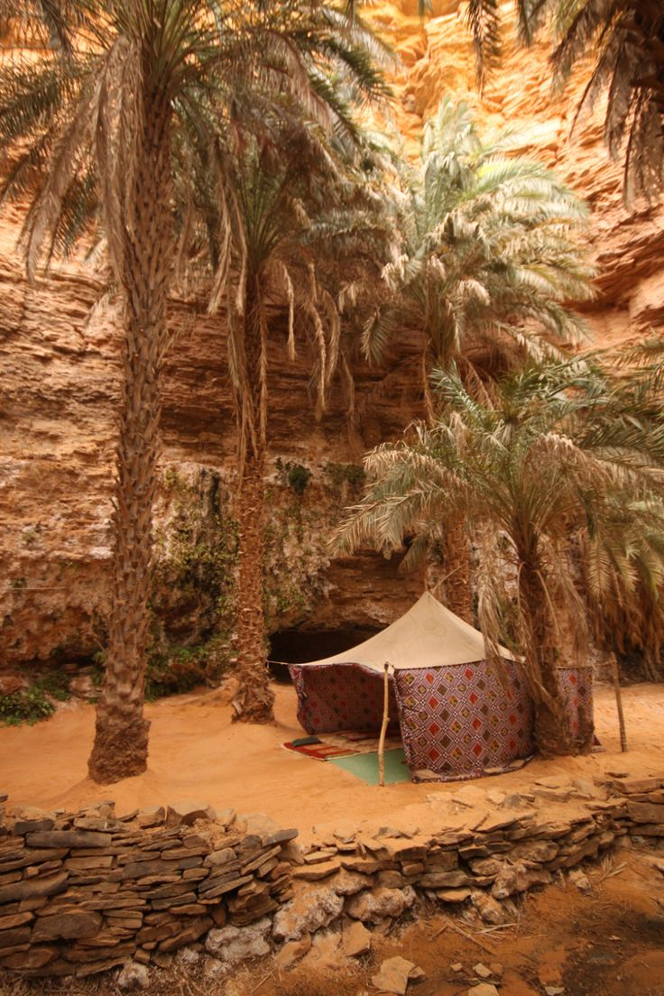 Oasis tentTarjit, Mauritania (MR) - África
