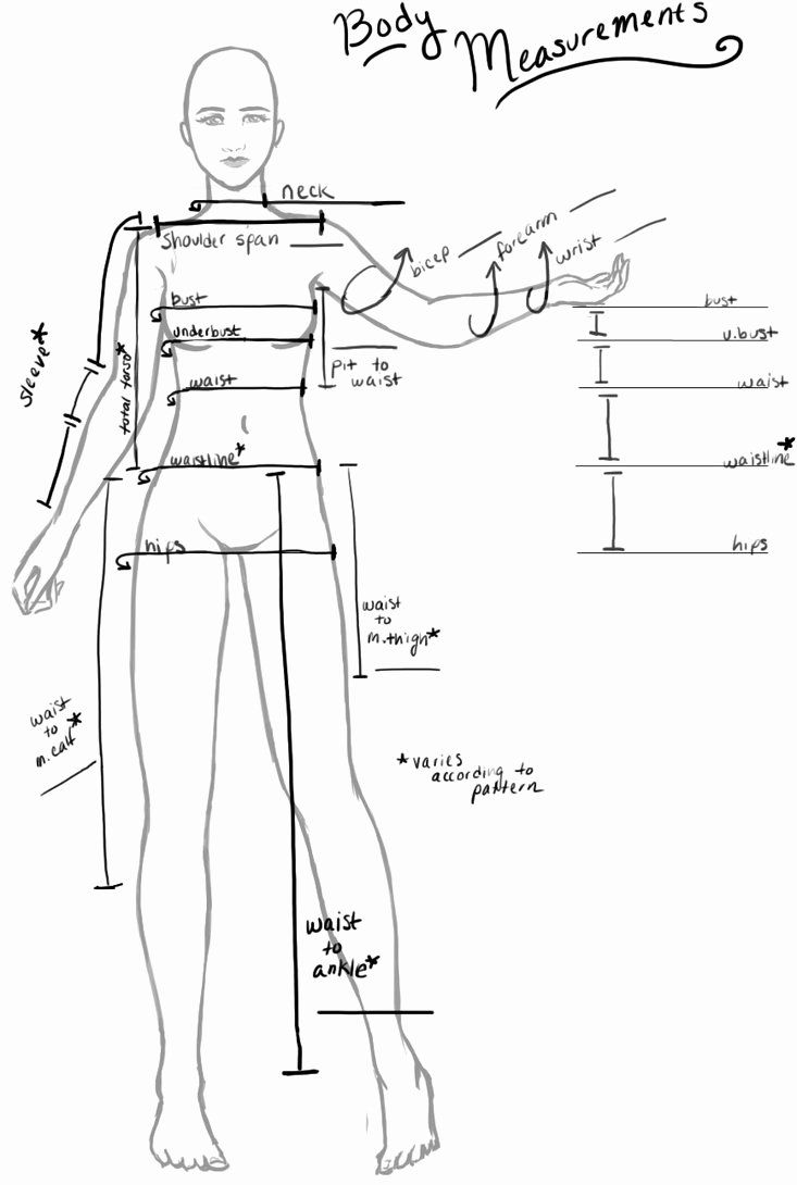 Clothing size chart template new my body measurement chart