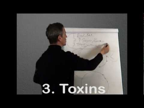 ▶ What is Leptin Resistance Part 1 and 2 On How To Lose Weight - YouTube (Dr. Daniel Pompa, ~13 mins)