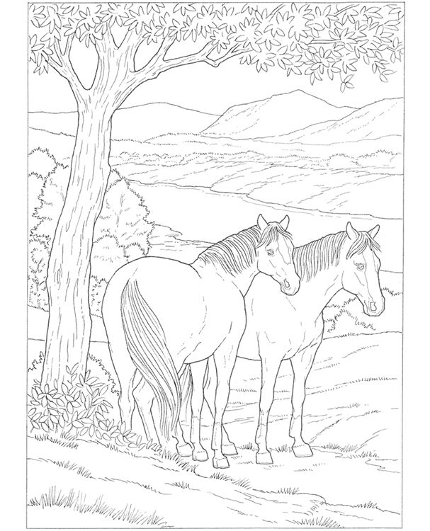 The 101 best Unicorns horse coloring images on Pinterest | Coloring ...