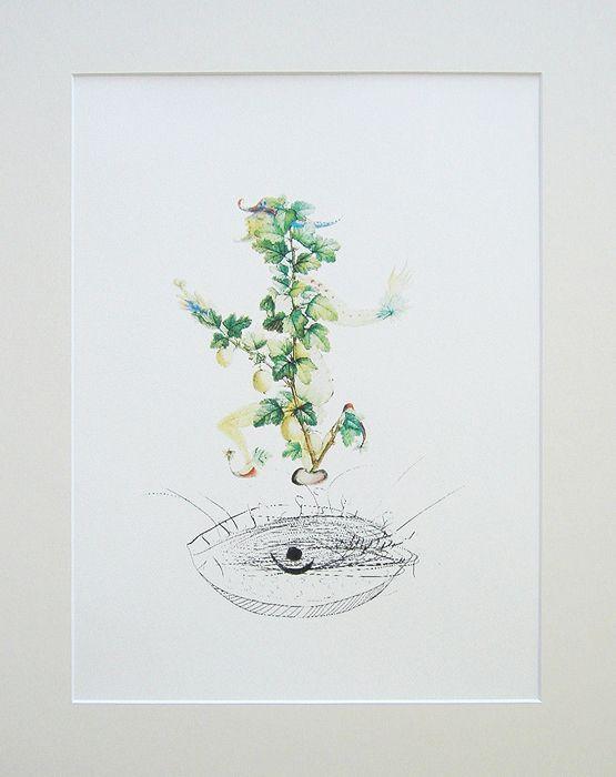 Сальвадор Дали. Смородина. Цветная литография.  Серия FlorDali Les Fruits, 1979 | 13 500 р.
