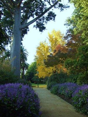 Albury Botanic Gardens - NSW