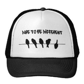 Birds on a wire – dare to be different hat