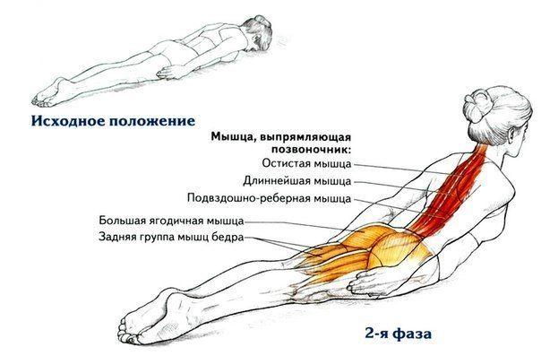 Растяжка подвздошной мышцы