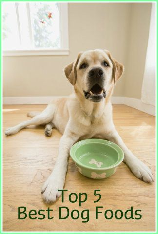 Top 5 Dog Foods: Best Dog Foods Reviewed
