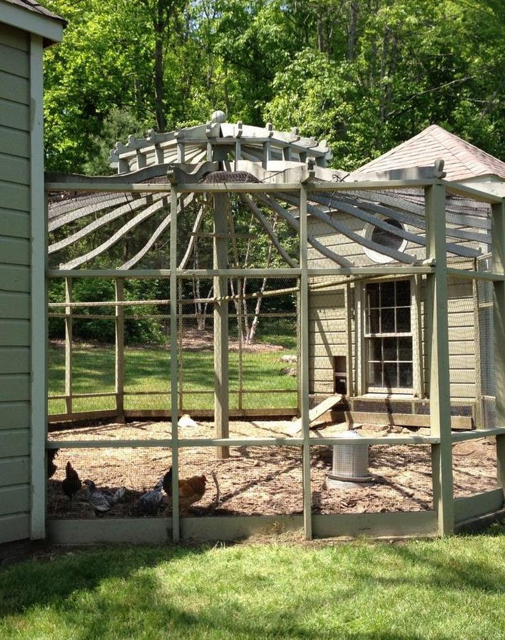 119 best images about chicken coop on pinterest gardens for Gazebo chicken coop