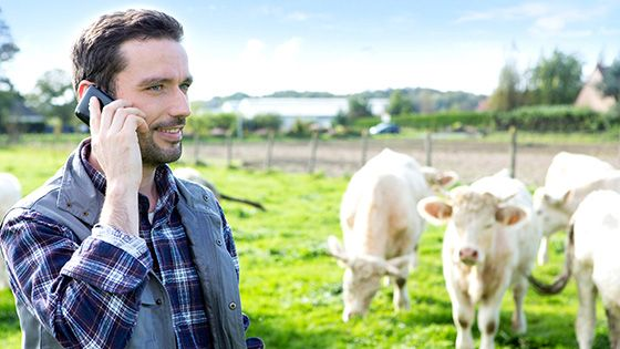 Research Headlines - Mentoring and money for innovative farming apps (via Research & Innovation)