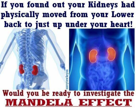 about Mandela Effect on Pinterest | Simulation Hypothesis, Mandela ...