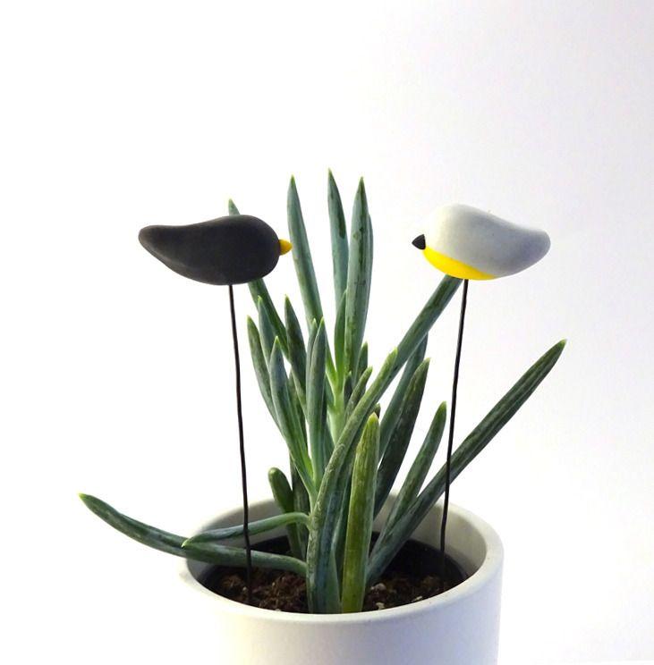 2 Pics oiseaux noir & gris et jaune - mat