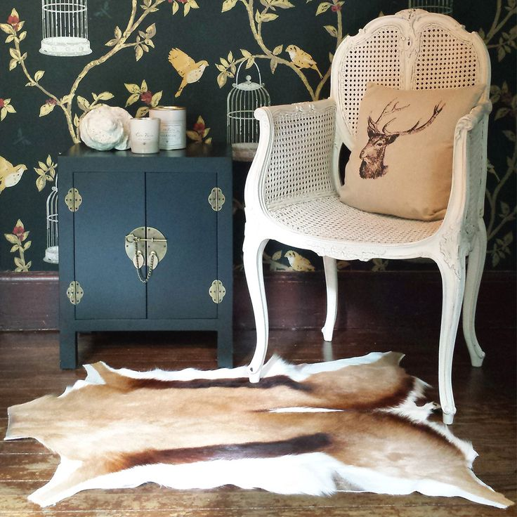 NEW! Springbok Hide | Rugs, Cowhides & Sheepskins | Rugs and Accessories…
