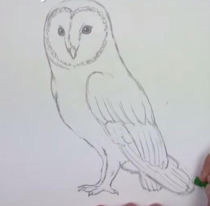 Strandkorb zeichnen  Die besten 25+ Eulen zeichnen Ideen auf Pinterest | Smiley ...