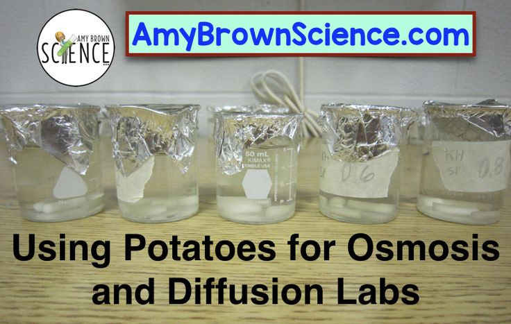 The teaching of osmosis and diffusion in a cell structure unit is timeless and absolutely necessary. There are so many lab activities to choose from for this topic, but what I describe in my blog post has proven to be the best for my students.