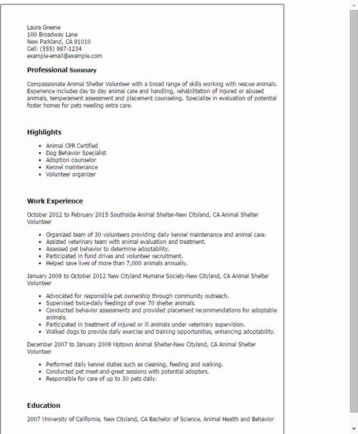 23 volunteer experience resume example in 2020  sample