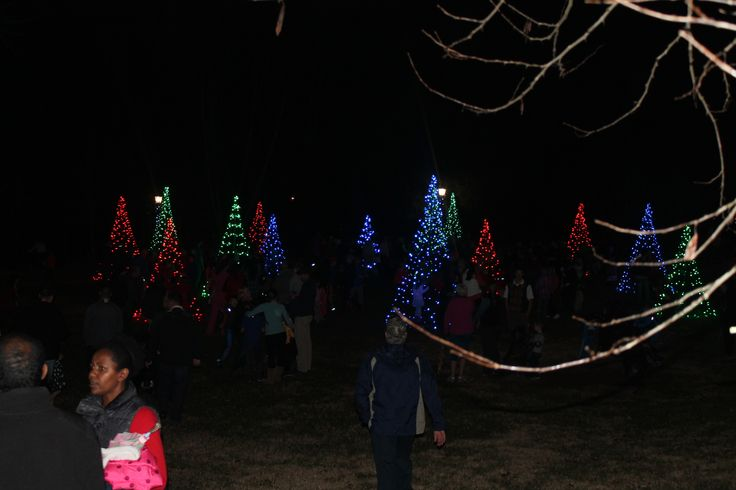 Light the Park, December 2014