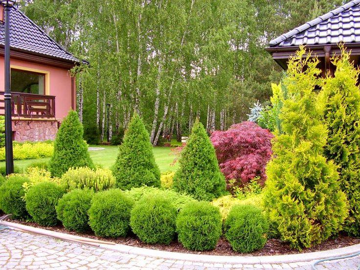 Ogród przydomowy. Ogrody Kielce. Greenpoint Ogrody Kielce.