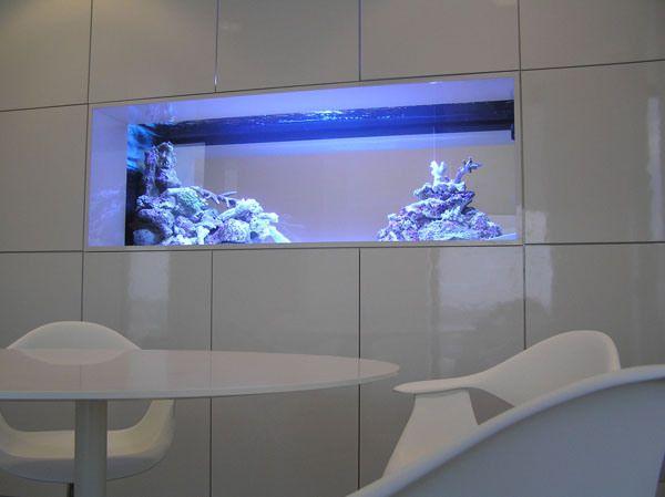 acquario artigianale3.jp