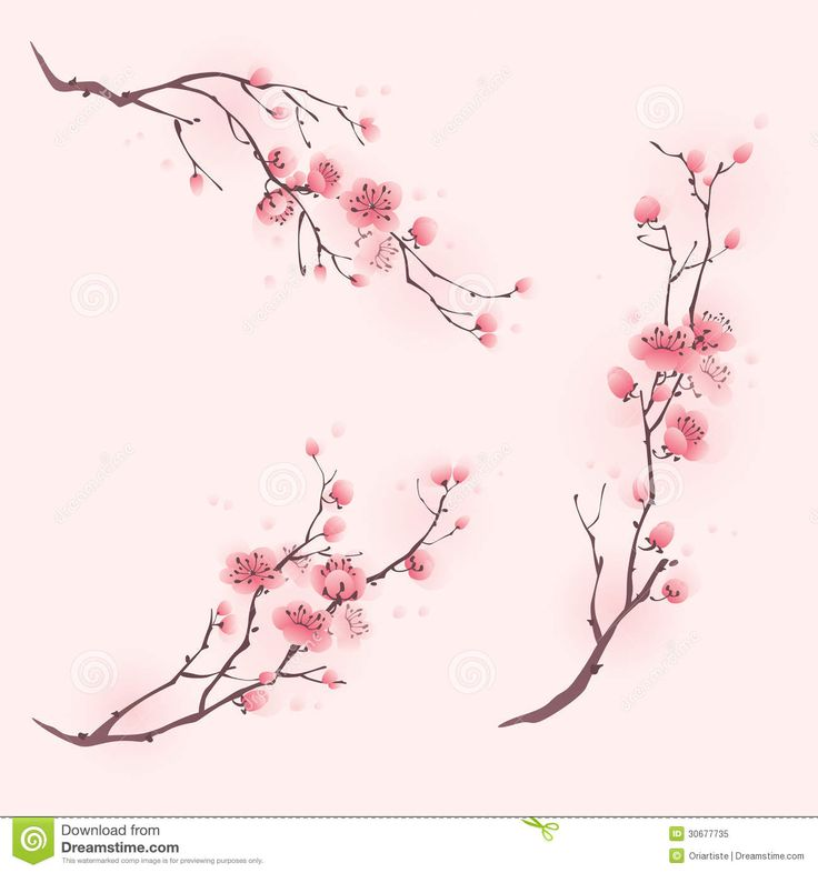 how to paint cherry blossoms - Google Search