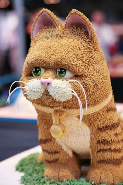 Garfield! ★ More on #cats - Get Ozzi Cat Magazine here >> http://OzziCat.com.au ★