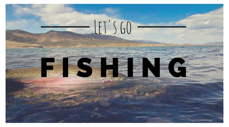Happy National Go Fishing Day! #GoFishingDay #LetsGoFishing #GoneFishing