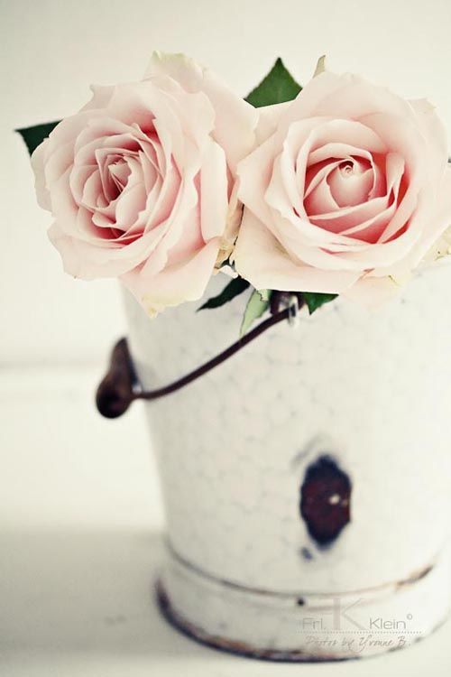 roses from the garden in such a simple rustic pot