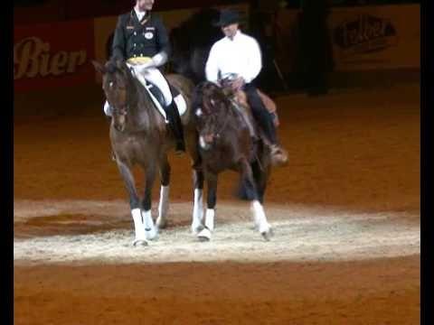 Fest der Pferde 2008: Klassik trifft western Smart Rattle Snake und Lausbub.  East versus West in Dressage.