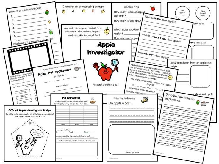 """Primary Research Apple Investigator     The Common Core Standards, along with 21st Century Skills require that children are more active in their own learning. Children are naturally inquisitive and educators should grasp that opportunity for learning by developing """"short research projects that build knowledge about a topic"""". This primary research packet was developed to aid children in """"learning to learn""""."""