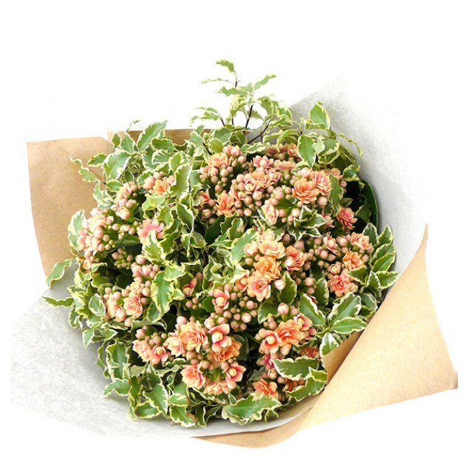 Le Bouquet K Succulent : bouquet de fleurs original qui dure longtemps
