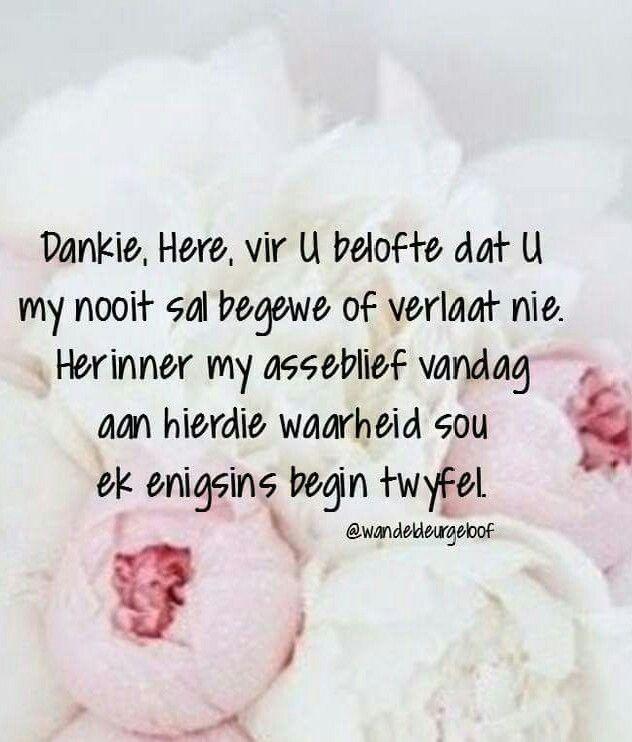 Dankie Here dat U my nooit begewe of verlaat nie... @wandeldeurgeloof #Afrikaans #ThankYou #Prayer