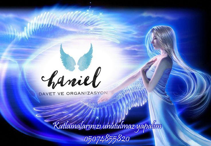 ANASAYFA - www.hanieldavetveorganizasyon.com