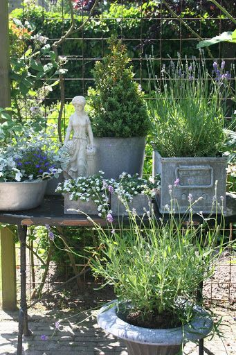 De tuin - jikke groen - Picasa Web Albums