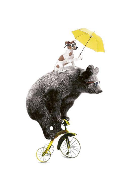 Poster with bear | Print with biking animals | Stylish prints