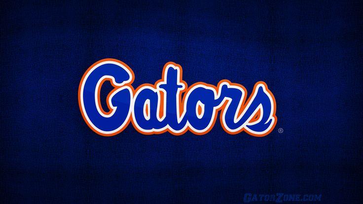 Gator Desktop Wallpaper Florida Gators