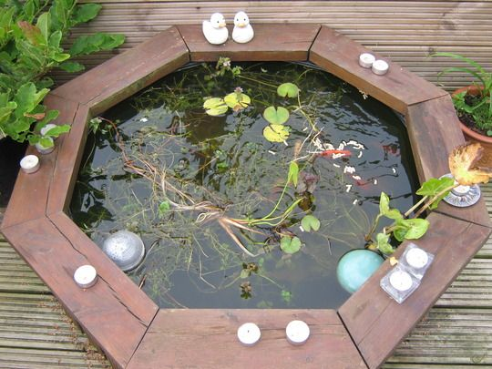 how to build a fish pond above ground