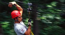 zip-line the longest canopy tour in the south  www.CaboHomesandVillas.com #CaboActivities