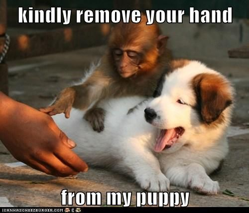 Kindly remove your hand...