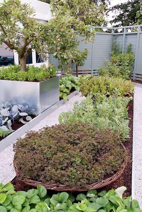 unknown location modern potager potager the modern kitchen garden pinterest modernt och. Black Bedroom Furniture Sets. Home Design Ideas